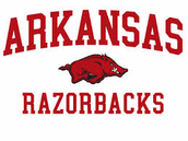 #1- University Of Arkansas