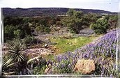 Some things to learn about Edwards Plateau
