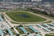 Woodbrine Racetrack