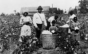Slavery (1619-1865)
