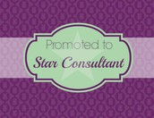Star Consultants