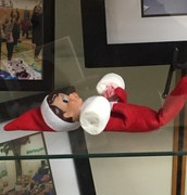Scooter the Library Elf