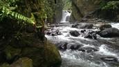 A rushing river in Ecuador