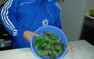 leaf salad mix