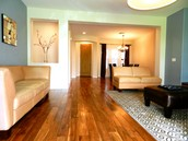 Spacious open living room