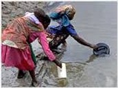 Effect of water scarcity.