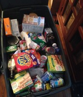 All the food I collected