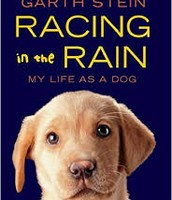 Racing in the Rain By:Garth Stein