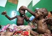 Children fighting for food