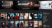 Netflix or Digital Downloads