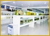 El Museo Ictícola