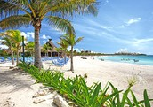 Working with You for Your Best Wedding Destination & Honeymoons and Dream Vacations