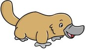 cartoon platypus