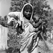 Causes and Results of Bengal Famine (1943)