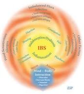 irritable bowel syndrome symptoms
