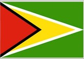 I am Guyanese
