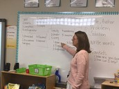 Mastery Phonics in 2nd Grade