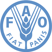 FAO- Food and Agriculture Organizations