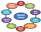 Literacy Cadre