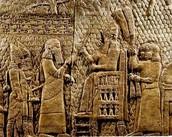 Assyrina