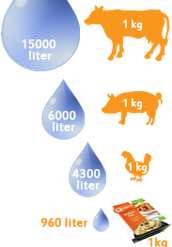 Hoeveel water kost de productie van vlees?