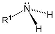 Первичные - RNH2