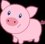 Little Old Pig