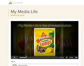 Student Videos for Digital Literacy - LMA