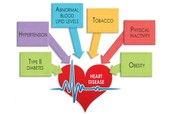 Risk Factors for Heart Disease: