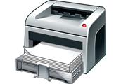 Puc imprimir i gravar?