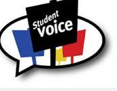 Student Voice Pilot Group