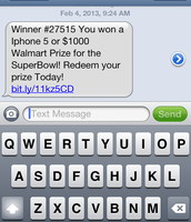 Fraud Text Message