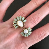$19.50 Zinnia Split Ring