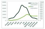 Population decrease