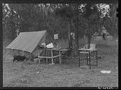 Camp Livingston, Government Camps