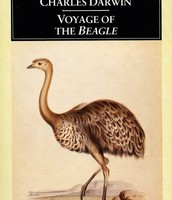 Darwin's Theories
