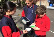 5/6S Testing How Fast You Can Melt An Ice Cube!