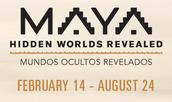Webinar: Maya: Hidden Worlds Revealed