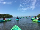 NE Region Council Members enjoy kayak outing...