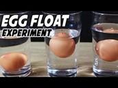 Make an egg float using salt