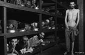 Survivors at Buchenwald Camp | April 16, 1945