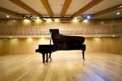 פסנתר כנף לפני הופעה