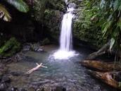 Catarata en El Yunque