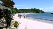 Beach Tartaruga