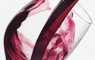 Uma rota de vinhos a não perder!