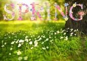 April 4th- April 8th