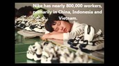 800,000 Nike Child Labor workers