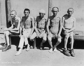 Survivors at Dachau Concentration Camp