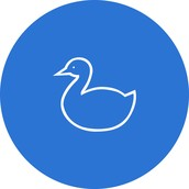 Waterstone Preschool Duck Class
