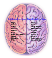I am mostly right side of the brain!